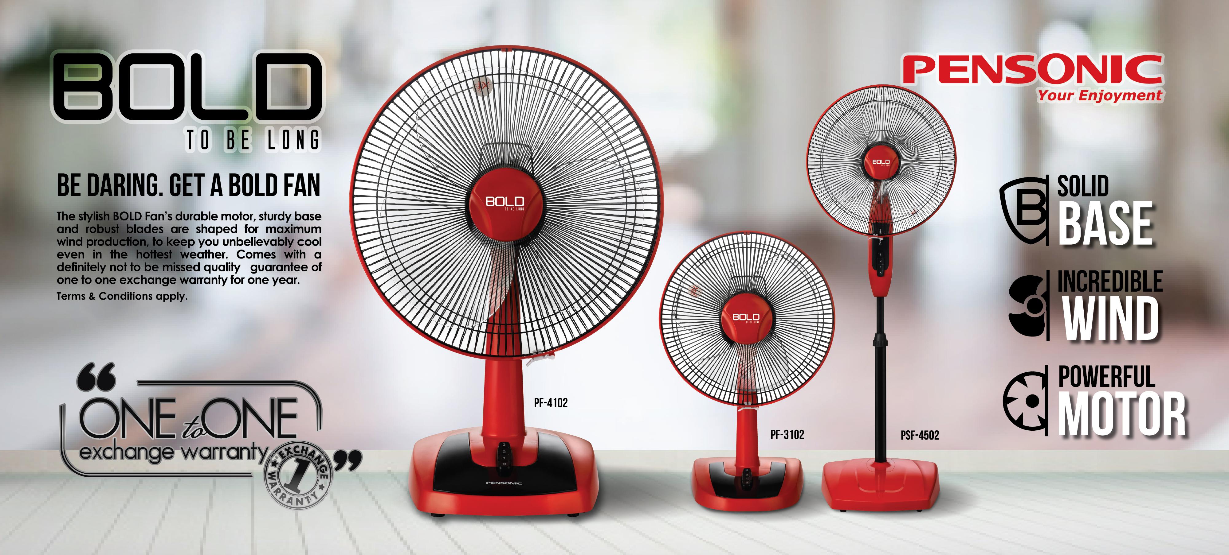 Bold-Fan-01